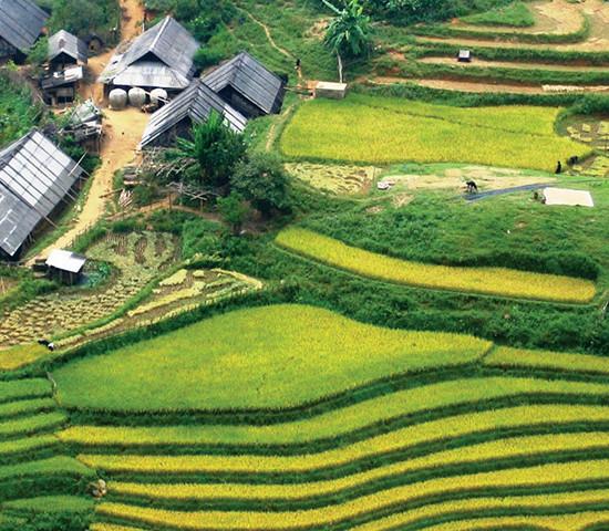 sapa---tavan-hill-tribe-village