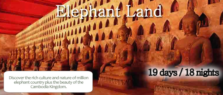Elephant Land