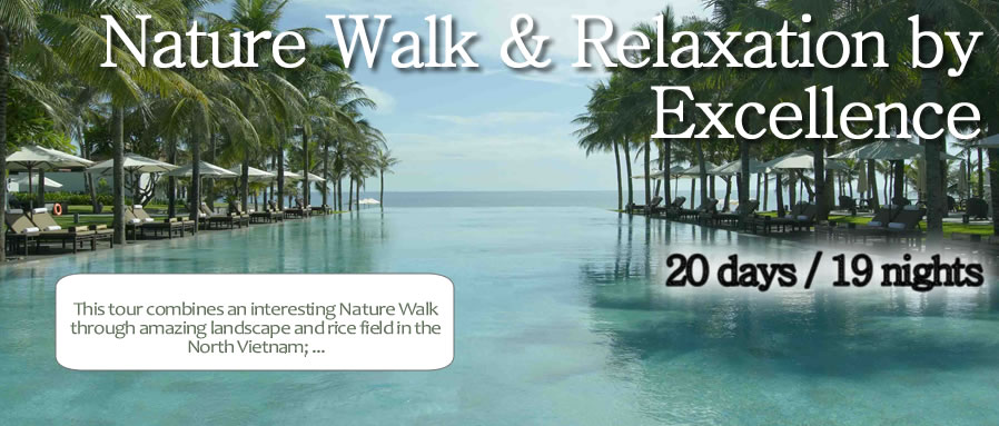 Nature Walk & Relaxation by Excellence