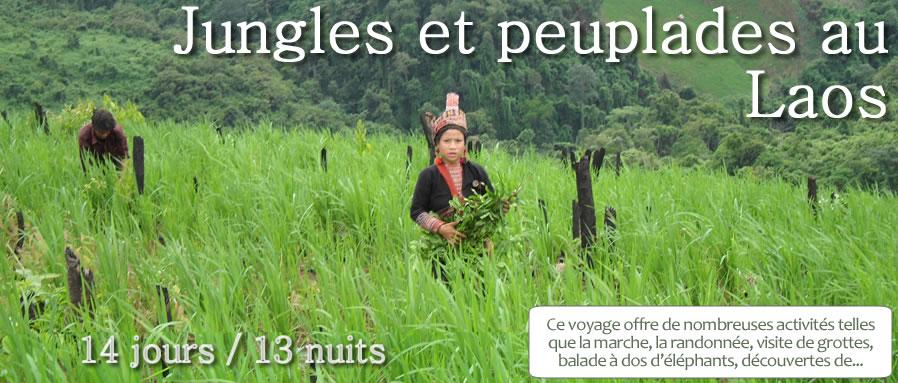 laos_jungleetpeupladeaulaos
