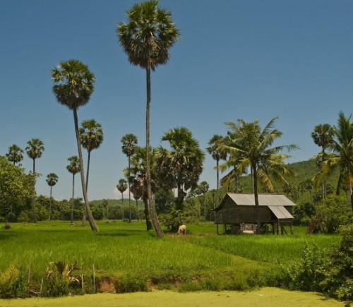 Excursions Cambodia32